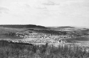 Blick vom Hochwald auf Düdelsheim.