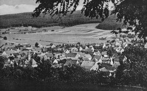 Blick von den Steinern auf Düdelsheim.